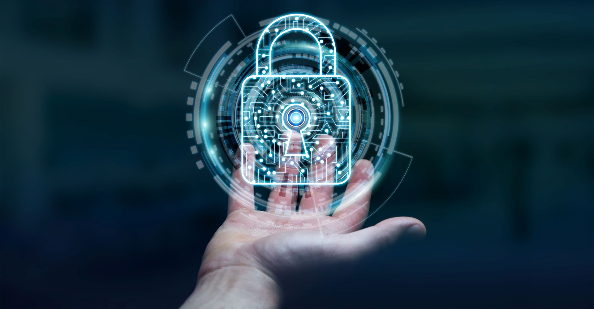 Strengthen and secure your IP management